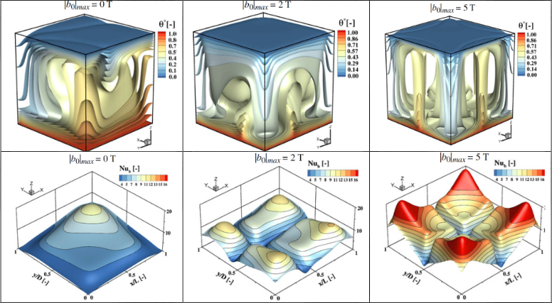 Thermo-magnetic convection in strong magnetic field gradients