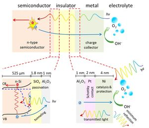 Cheap, efficient and stable photoelectrode could improve