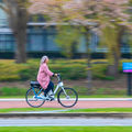 Smart motor in handlebars prevents bicycles from falling over photo